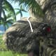 Archaeology 101 - Gameplay 01: Far Cry 3 Relic 114, Heron 24.