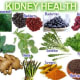 Foods that are good for kidney disease