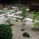 A courtyard garden, summer at Tamozawa.
