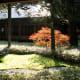 Autumn courtyard garden at Tamozawa.