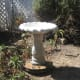 Once completed you will have adjusted the concrete birdbath level and ready for water.