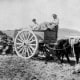 Vintage photo of men loading a cart pulled by mules