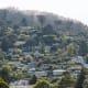 Hills of Sausalito