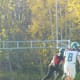 My middle son (8) as wide receiver playing high school junior football.