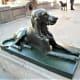 Bronze-effect dog statue, Plaza de Santa Ana, Las Palmas.