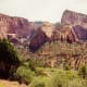 View along the Taylor Creek Trail in Kolob Canyons