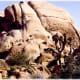 These rocks are composed of quartz monzonite.