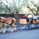 Viewed at Furnace Creek Ranch