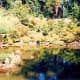 Strolling Pond Garden