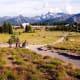Subalpine meadows at Sunrise in Mount Rainier National Park
