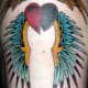 Feather wings and a heart.