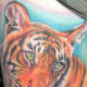 tiger-tattoos-and-meanings-tiger-tattoo-designs-and-ideas