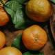 Rangpur (Mandarin) lime