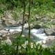 View from the bridge of Tiklas Falls Resort.