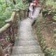 Some of the steps in going to Mag-Aso Falls.