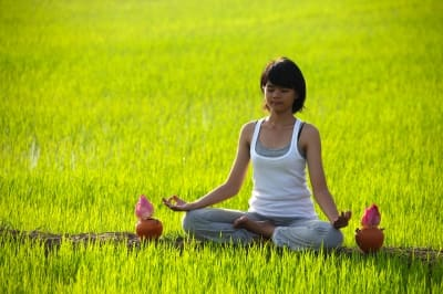 yoga poses to improve digestion  caloriebee  diet  exercise