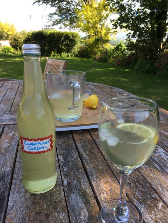 How to Make Elderflower Cordial: A Refreshing Summer Drink ...