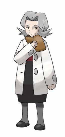 Boden-Typ Pokemon-Anwender