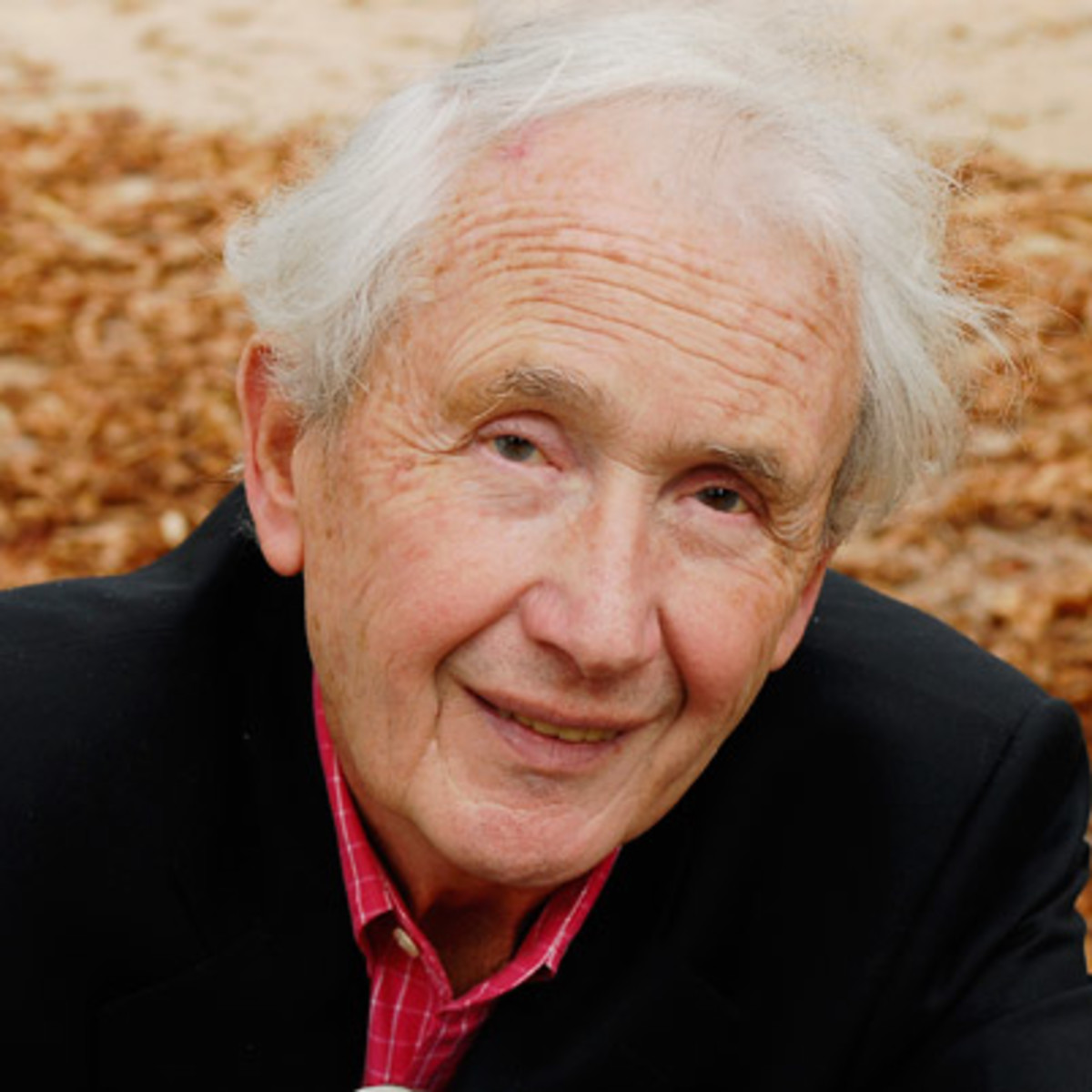 an overview of the unique writing style of frank mccourt an american writer