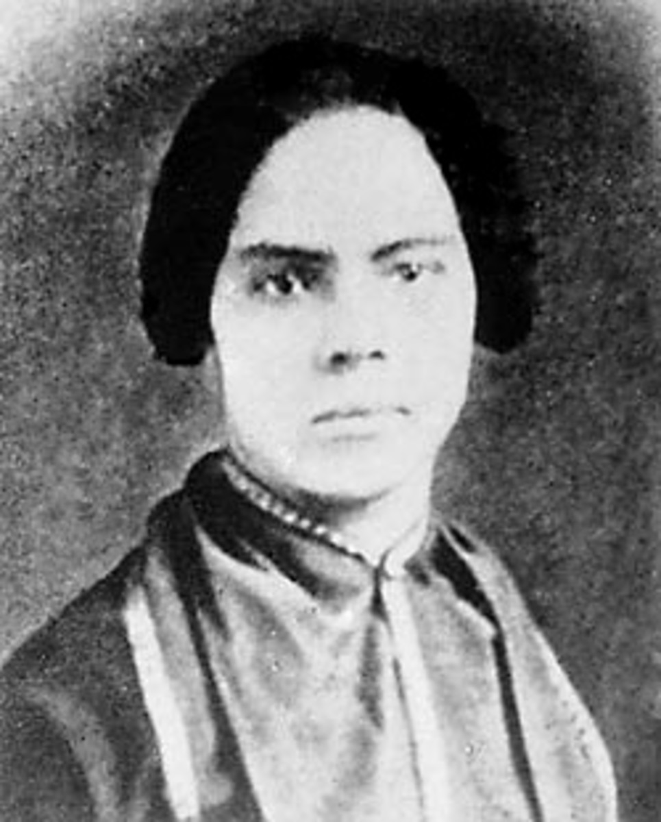 the life and work of mary ann shadd cary on the issues of slavery At times she shocked her audience as she tried to take on issues of both the book was the first anti-slavery work the life of lydia maria child, 339.