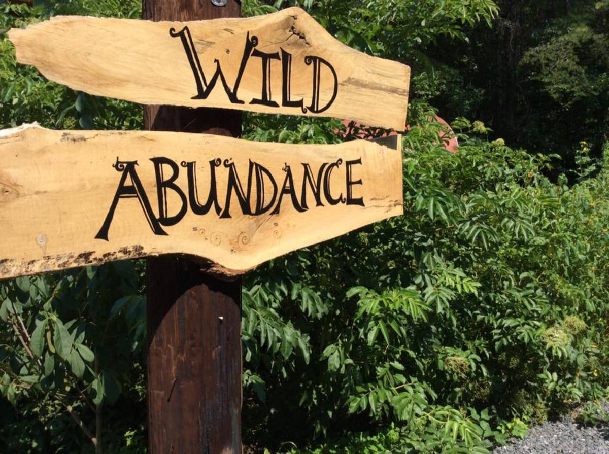 The school will not shut down (Photo: Wild Abundance)
