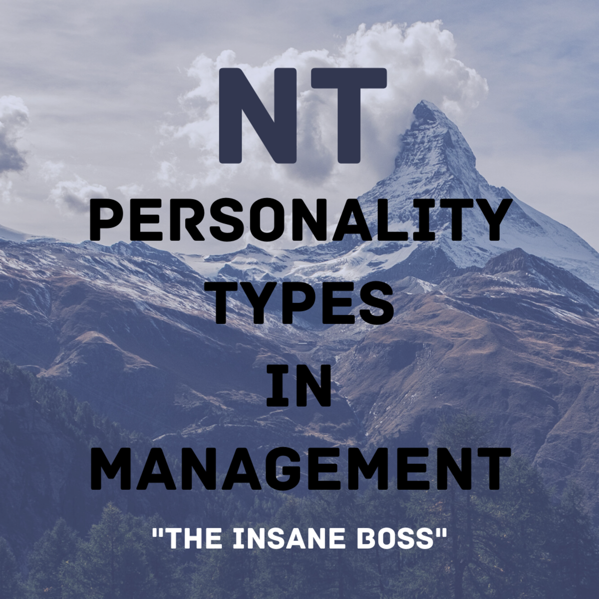 INtuitive Thinkers (NTs) aim for the mountaintops in the workplace—but as bosses, they can be challenging.