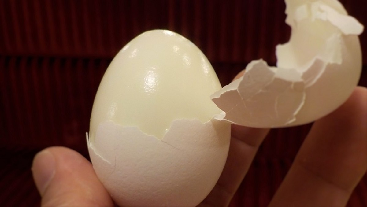 The shell of an easy-peel egg comes away cleanly and leaves the white undamaged.