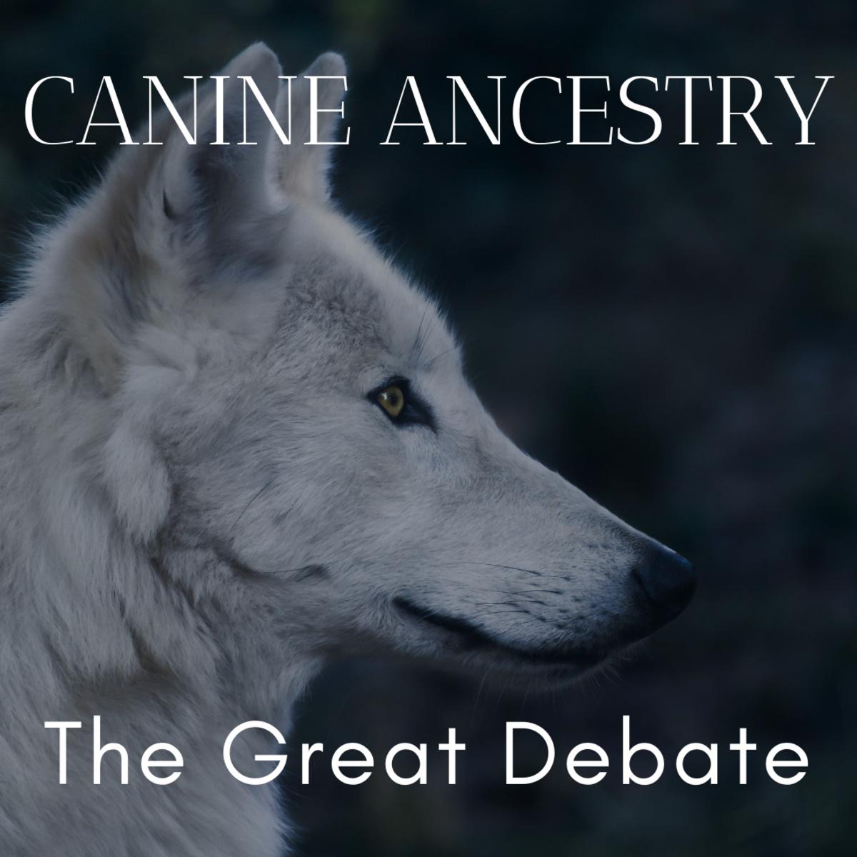 Origin of the Domestic Dog