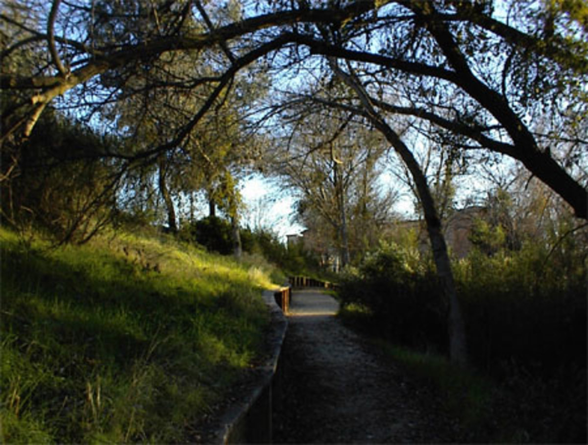 Great Short Hikes in North San Luis Obispo County: Paso Robles, Templeton, and Atascadero