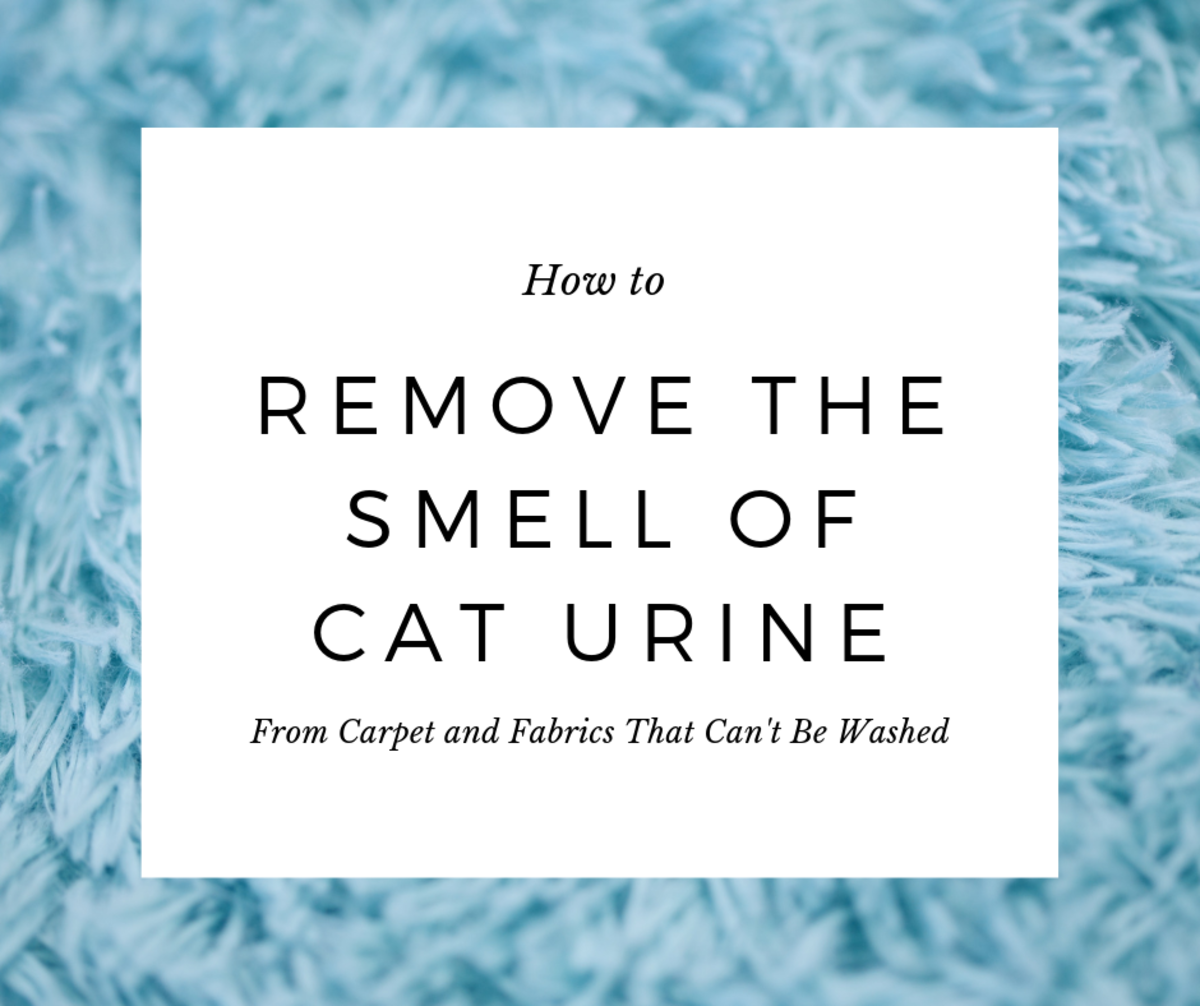 Removing the smell of cat urine isn't impossible—just follow these three easy steps.