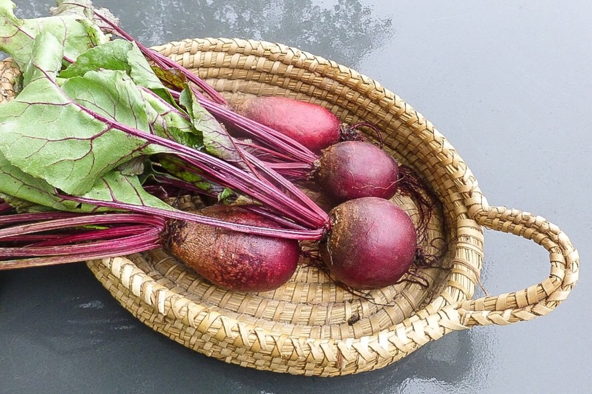 Beets or beetroot can color urine pink. This may be alarming but is harmless.