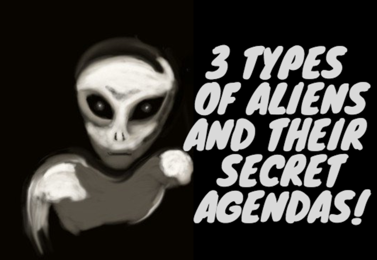 Do Aliens Exist? Three Prominent Alien Types Exposed!