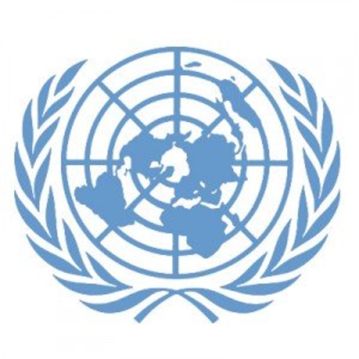 Overview of the International Peace United Nations Organization