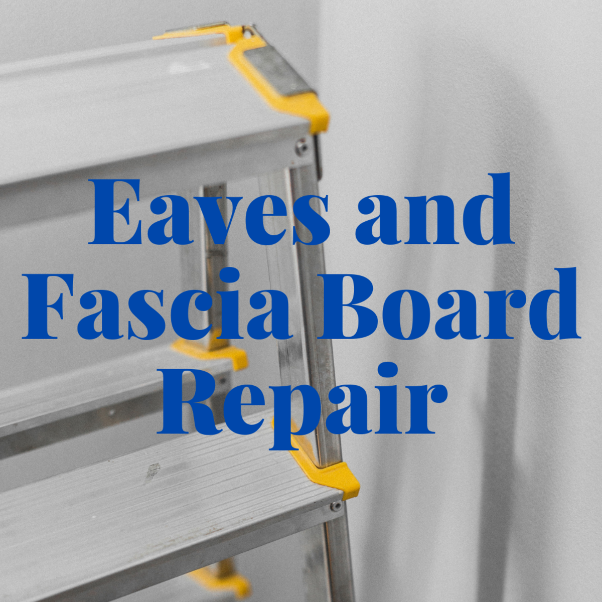 Eaves and Fascia Board Repair