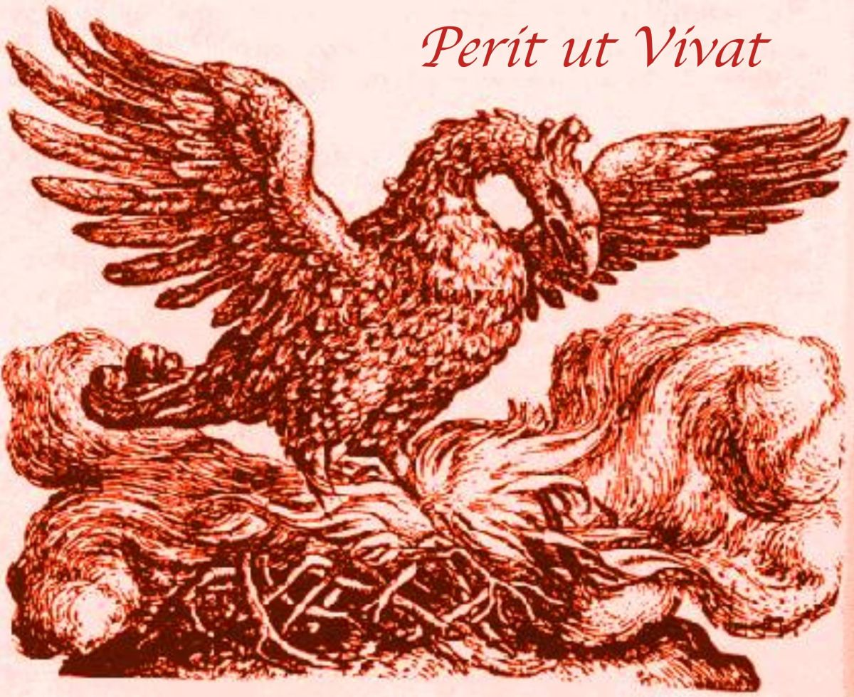 The Phoenix: A Mythological Bird