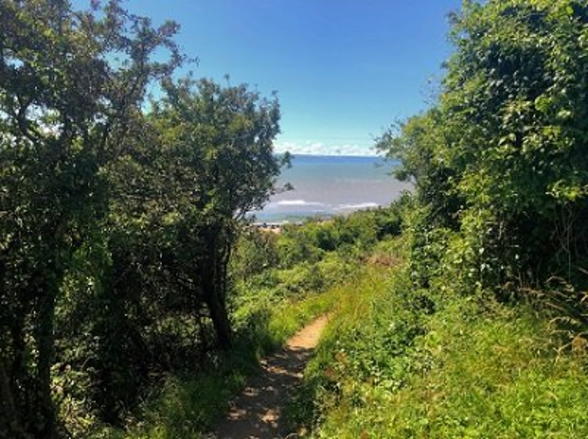 Walking in the Vale of Glamorgan - Exploring Vale Trail 3