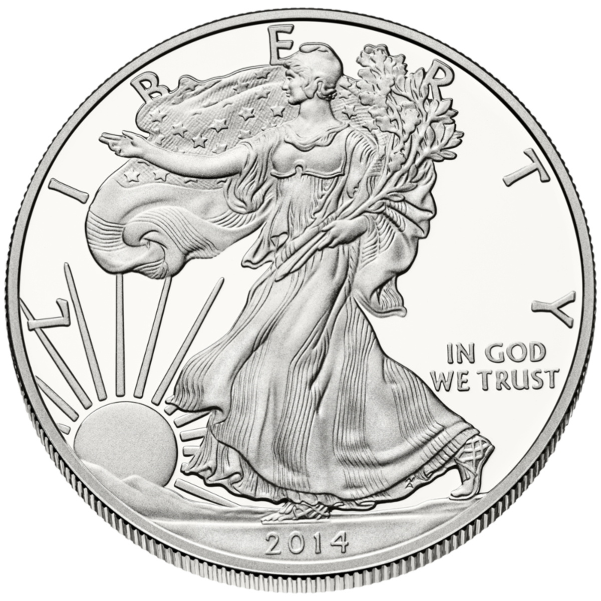 United States Liberty $1 Silver Coin