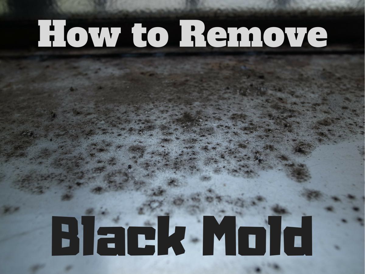 the basics of black mold removal dengarden. Black Bedroom Furniture Sets. Home Design Ideas