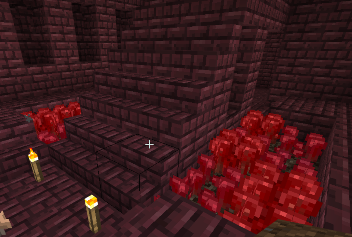 "Nether wart is a crop in ""Minecraft."""