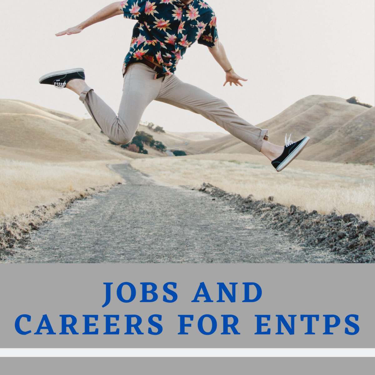 Are you an ENTP? If so, read on to see which jobs will make the best use of your high-energy personality!