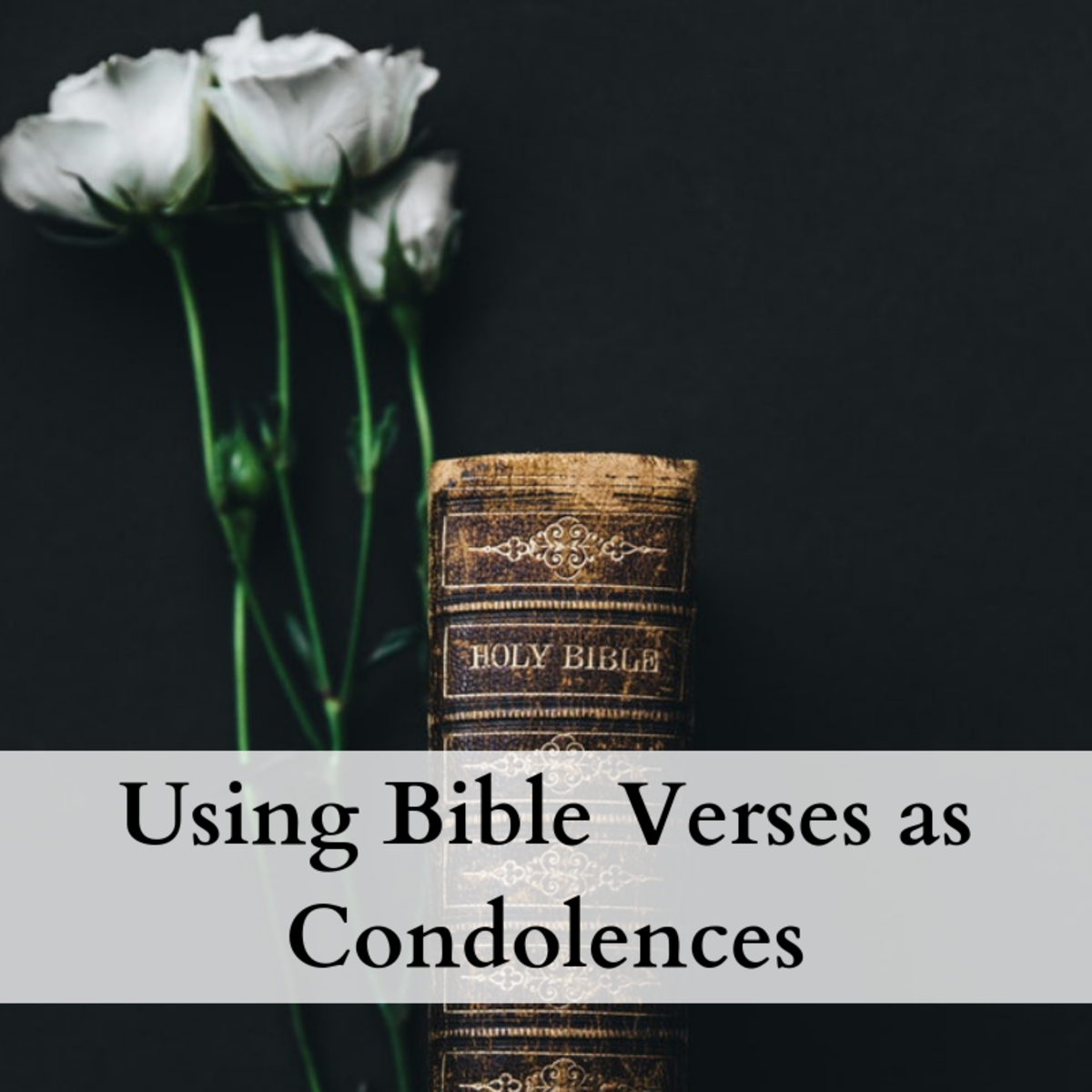 Bible Verses to Use as Condolences and Sympathy Messages
