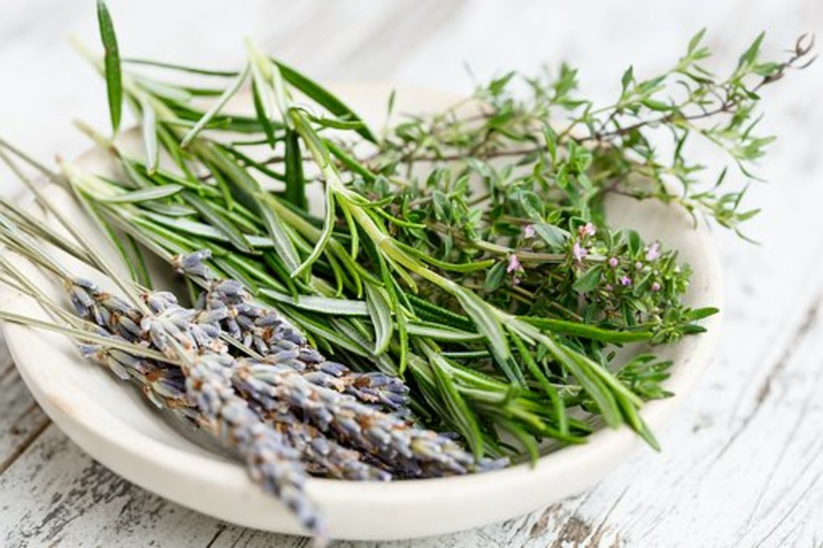 Grow Herbs From the Produce Section to Save Money