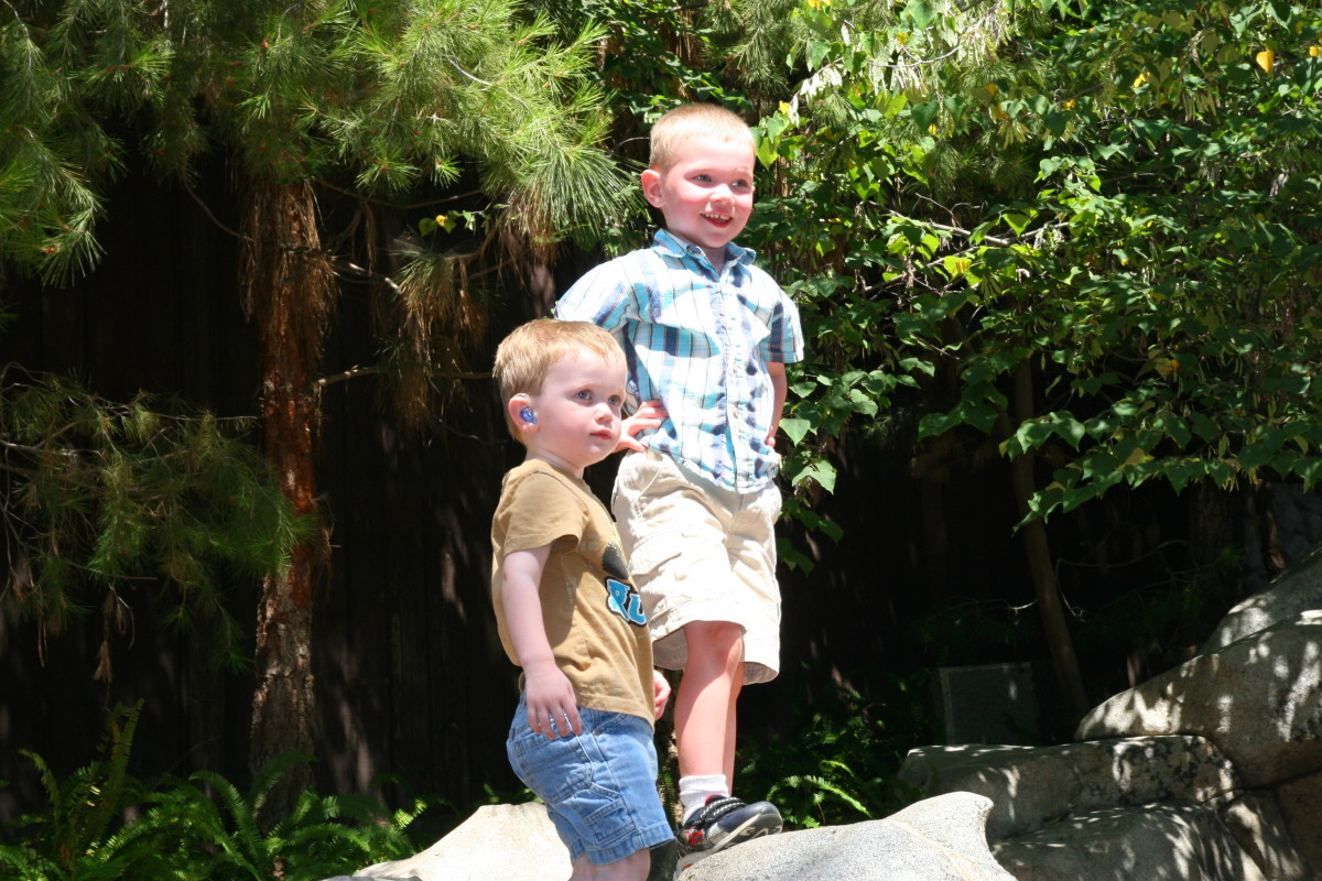 There are many areas young children may enjoy in the California Adventure park. The Redwood Creek Challenge Trail is a toddler favorite!