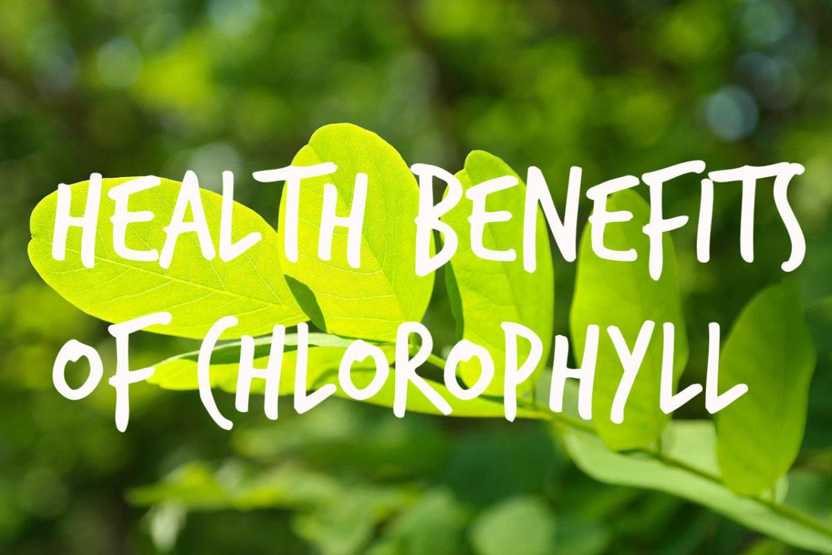 Chlorophyll Benefits and Claims—Is it Overhyped?