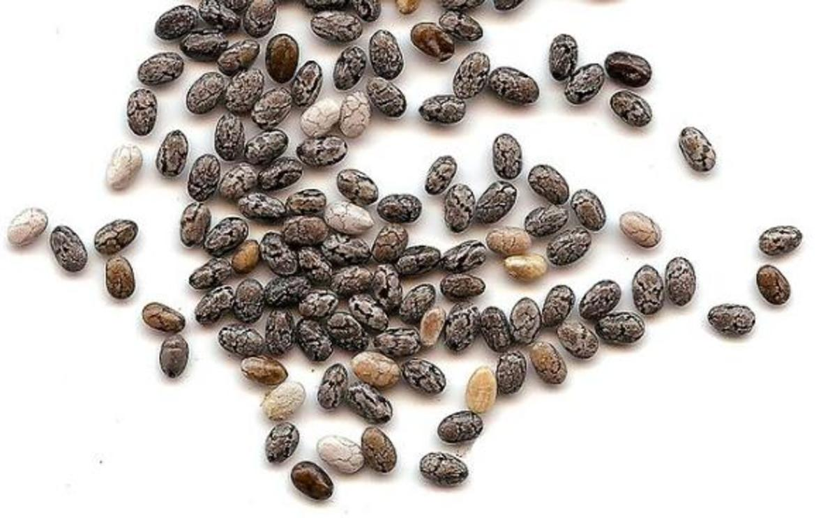 Chia Seeds: Benefits and Side Effects