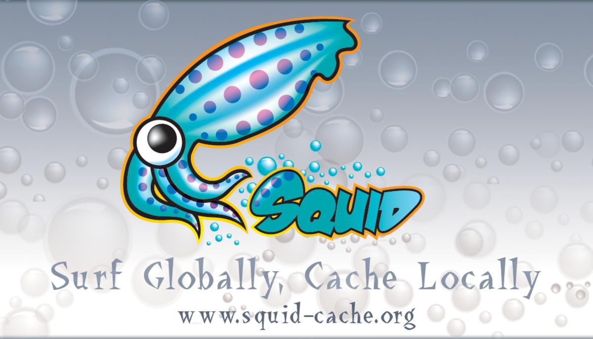 How to Set Up a Transparent Squid Proxy Server Using pfSense