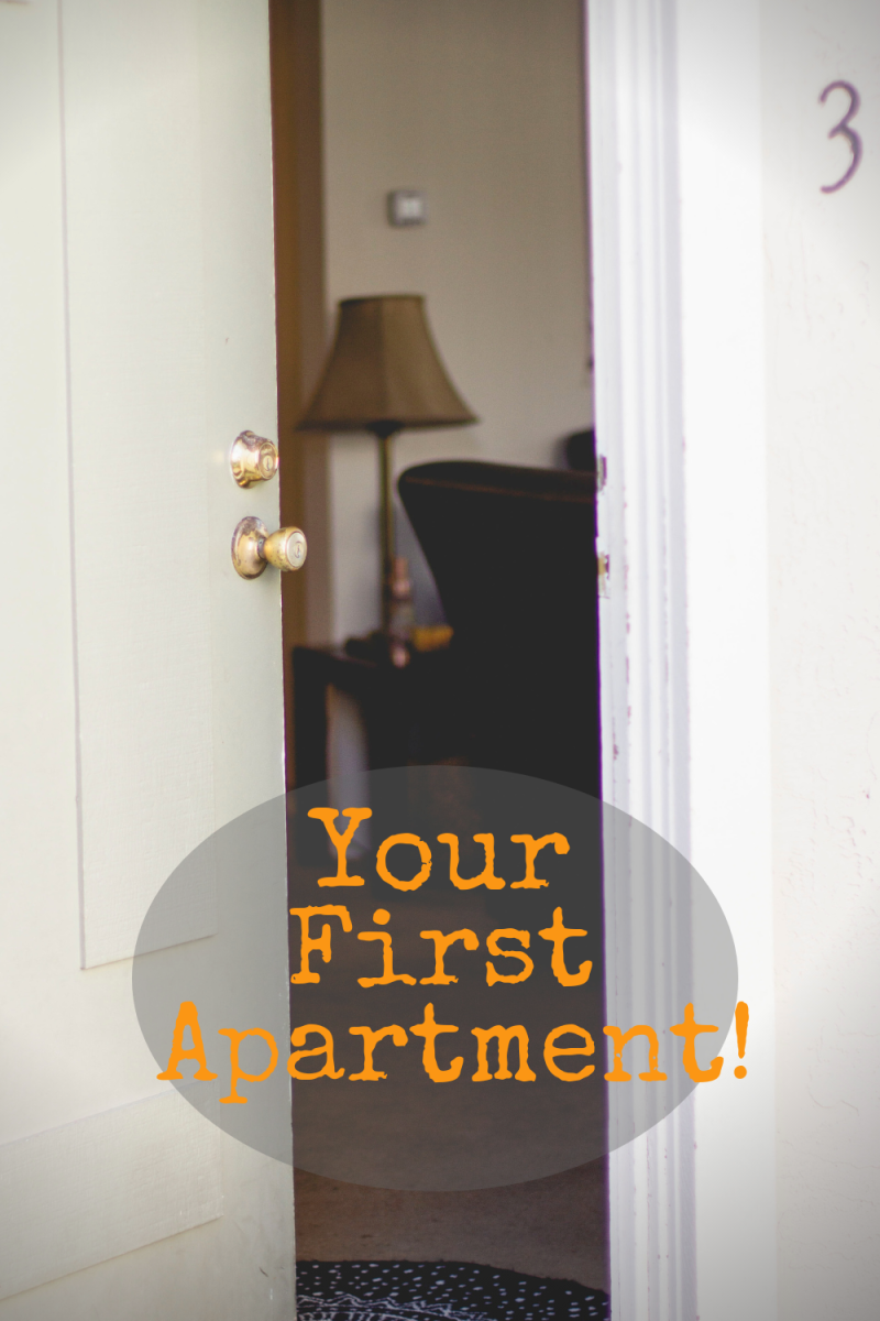Taking the right steps towards getting your first apartment will help you secure your dream spot independently.