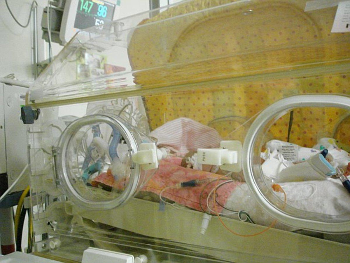 A modern-day baby incubator.
