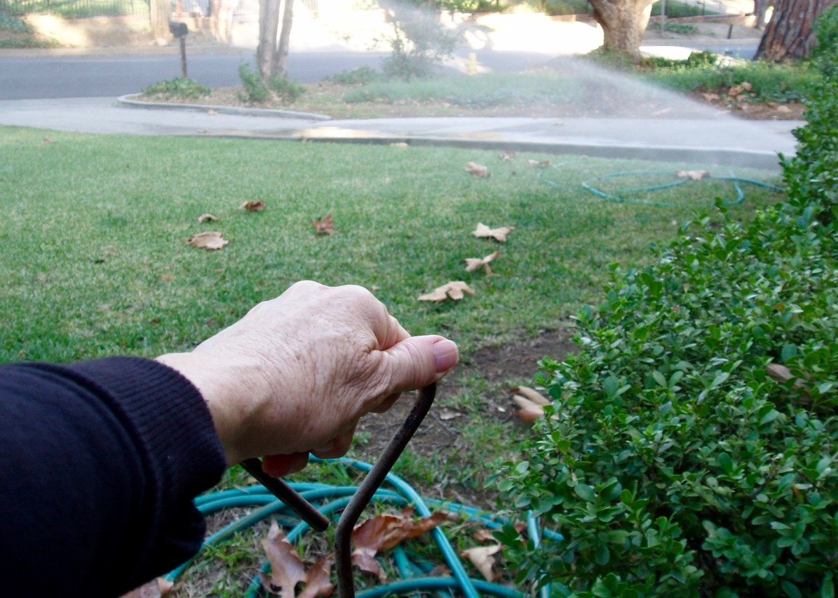 Turning sprinklers on by hand works only if you don't have very many. In this case, I open sprinkler valves in four different locations to water three lawns and two areas of trees with ground cover. It takes a long time to water everything.