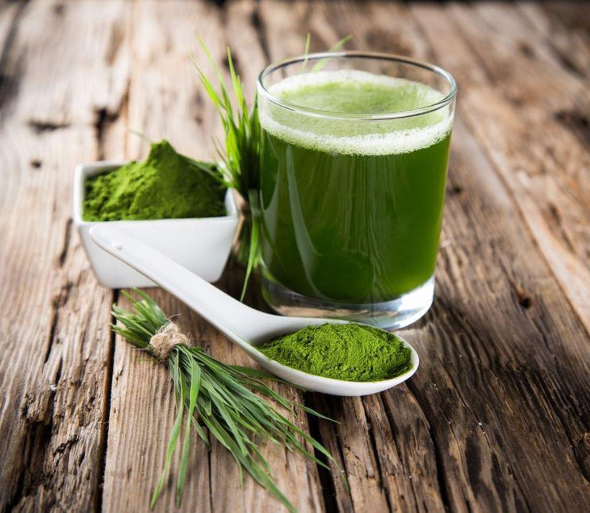 The Wonderful Wheatgrass Powder Health Benefits